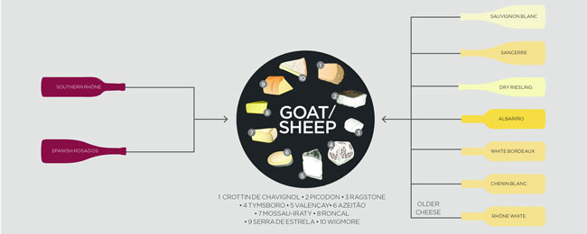 cheese-and-wine-goat-sheep